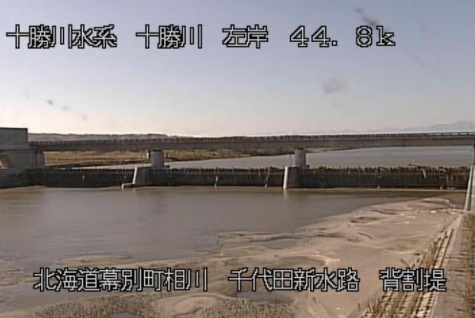 十勝川千代田新水路背割堤ライブカメラ(北海道幕別町相川)