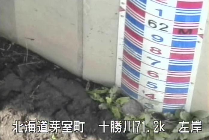 十勝川芽室太第1樋門ライブカメラ(北海道芽室町北芽室)