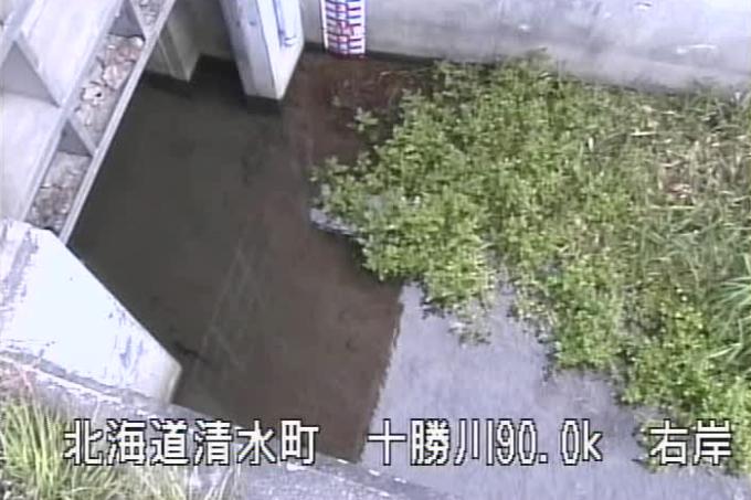 十勝川ニトマップ第1樋門ライブカメラ(北海道清水町人舞)