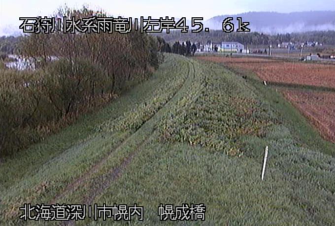 雨竜川幌成橋ライブカメラ(北海道深川市幌内)