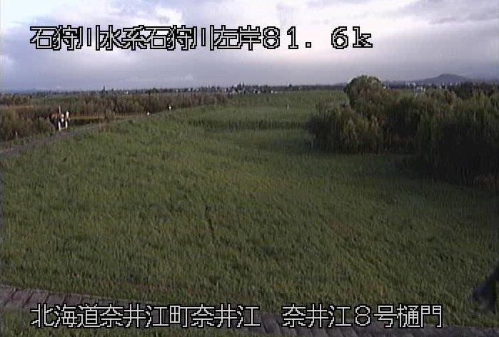 石狩川奈井江8号樋門ライブカメラ(北海道奈井江町奈井江)
