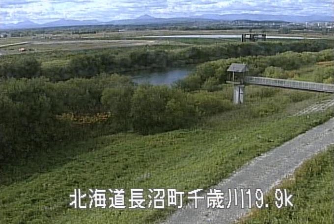 千歳川西9線樋門ライブカメラ(北海道長沼町西9線南)