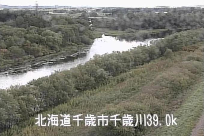 千歳川根志越ライブカメラ(北海道千歳市根志越)