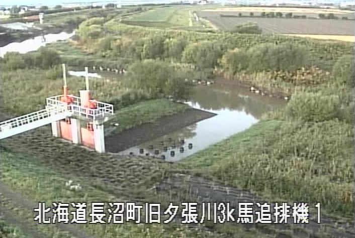 旧夕張川馬追運河排水機場ライブカメラ(北海道長沼町西9線南)