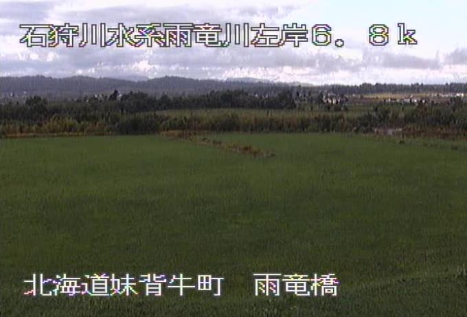 雨竜川雨竜橋ライブカメラ(北海道妹背牛町メム)