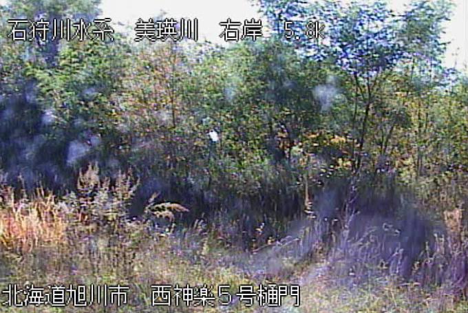 美瑛川西神楽5号樋門ライブカメラ(北海道旭川市西神楽1線)