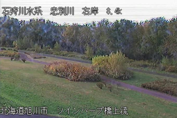 忠別川ツインハープ橋ライブカメラ(北海道旭川市東光)