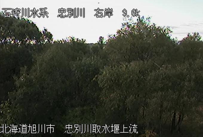 忠別川取水堰上流ライブカメラ(北海道旭川市東光)