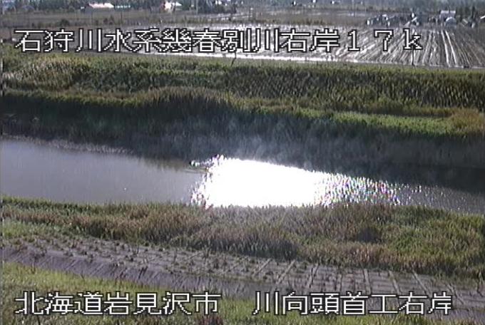 幾春別川川向頭首工右岸ライブカメラ(北海道岩見沢市東町)