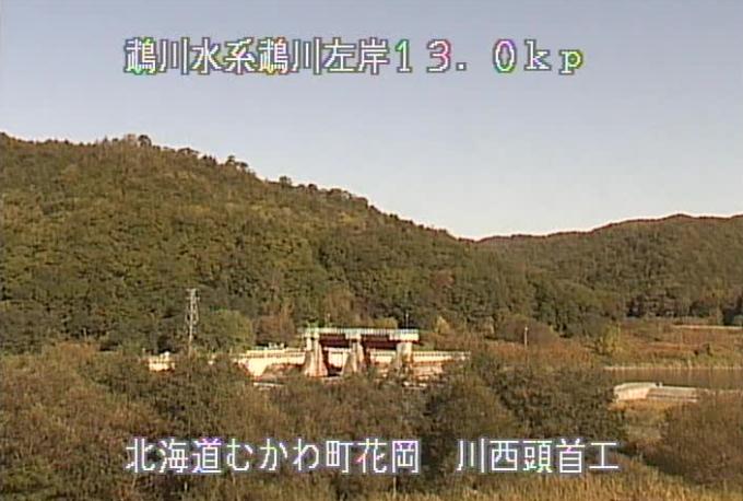 鵡川川西頭首工ライブカメラ(北海道むかわ町花岡)
