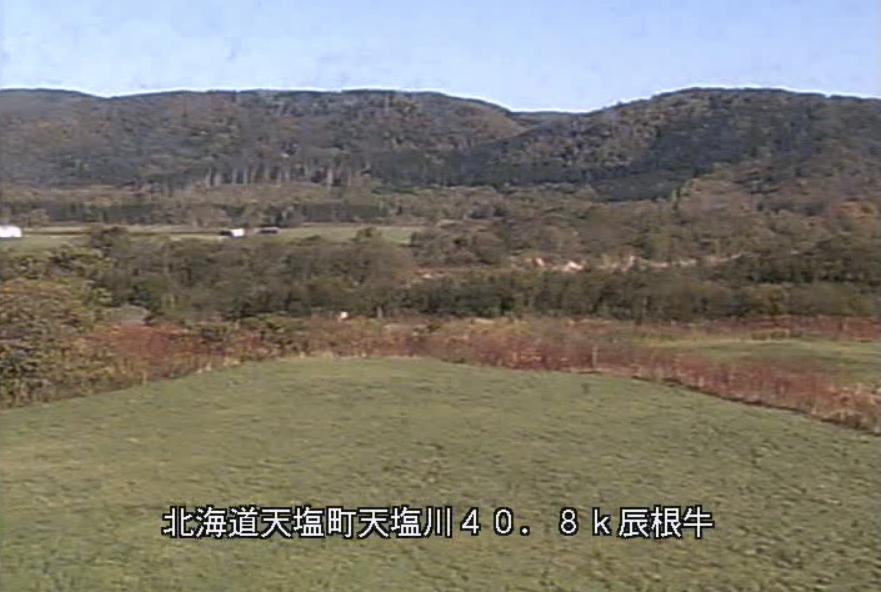 天塩川辰根牛観測所ライブカメラ(北海道天塩町タツネウシ)