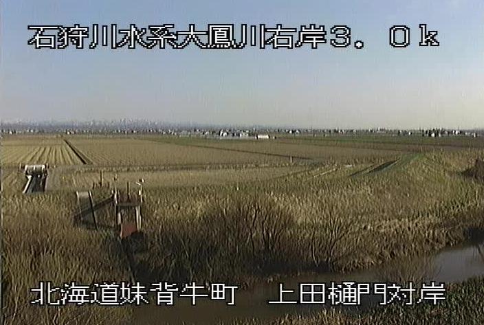 大鳳川上田樋門対岸ライブカメラ(北海道妹背牛町チクシベツ)