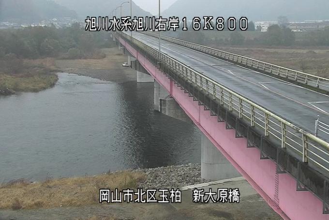 旭川新大原橋ライブカメラ(岡山県岡山市北区)