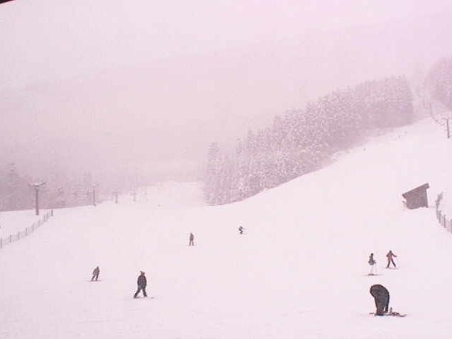 氷ノ山スキー場ライブカメラ(鳥取県若桜町つくよね)