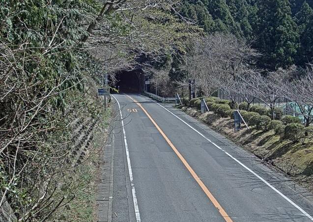 国道136号船原トンネル土肥側ライブカメラ(静岡県伊豆市土肥)