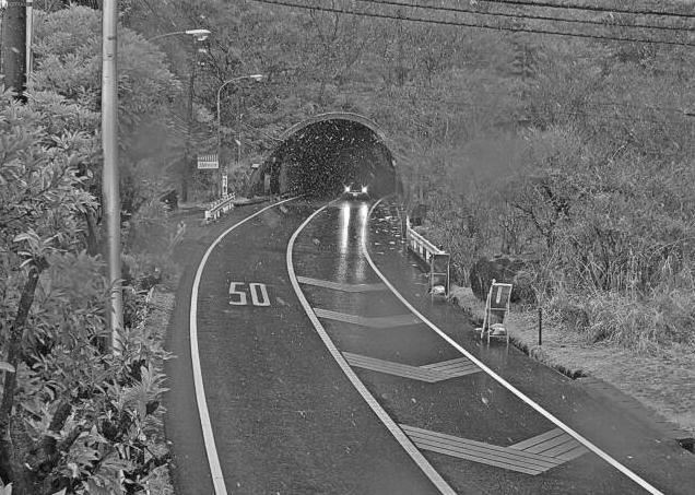 静岡県道11号熱海函南線鷹ノ巣山トンネル函南側ライブカメラ