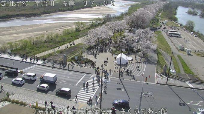 さくらであい館ライブカメラ(京都府八幡市八幡在応寺)