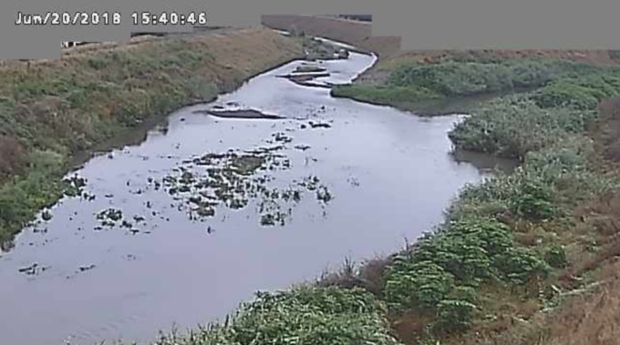 新河岸川砂観測局ライブカメラ(埼玉県川越市砂)