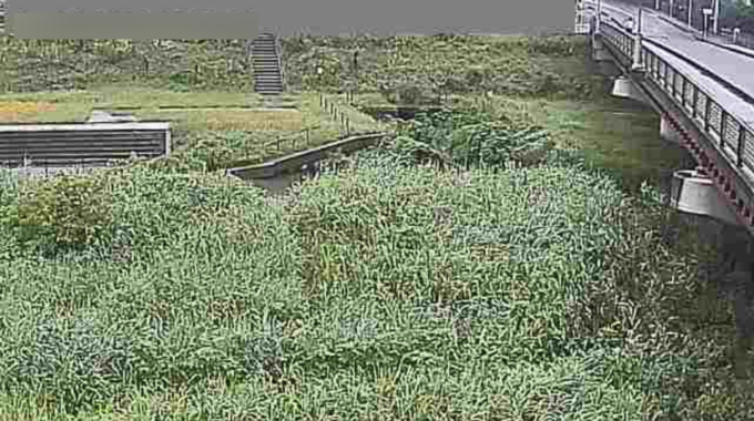 新河岸川養老橋観測局ライブカメラ(埼玉県川越市古市場)