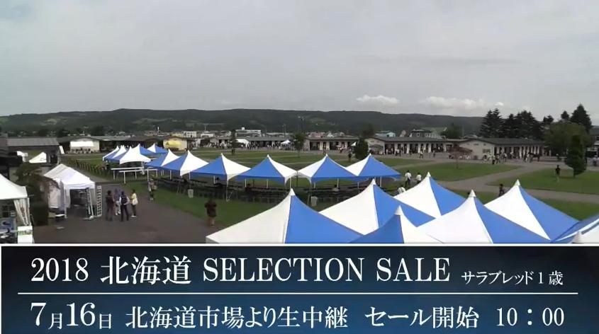 北海道セレクションセール2018ライブカメラ(北海道新ひだか町静内)
