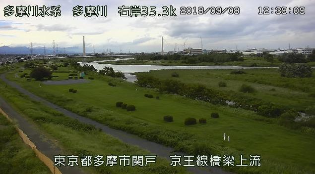 多摩川京王線橋梁上流ライブカメラ(東京都多摩市関戸)