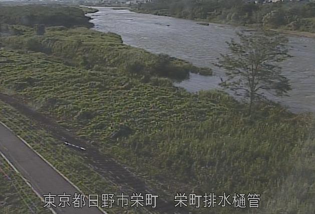 多摩川栄町排水樋管ライブカメラ(東京都日野市栄町)