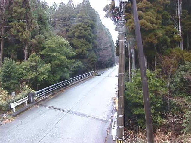 ファームロード田の原ライブカメラ(熊本県南小国町満願寺)