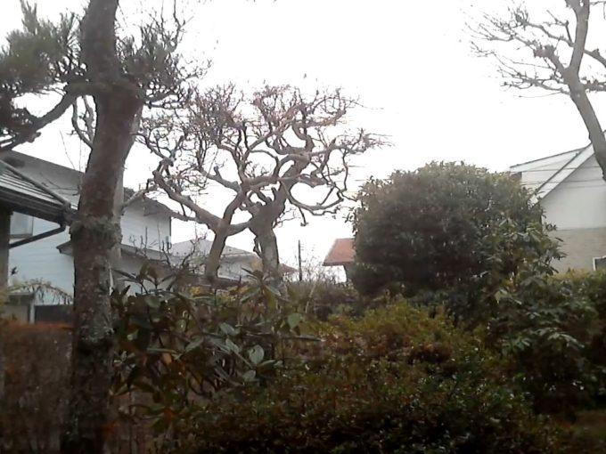 仙台市泉区上空天気ライブカメラ