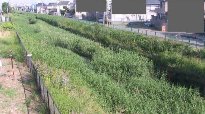 鴨川ずずむき橋ライブカメラ(埼玉県上尾市柏座)