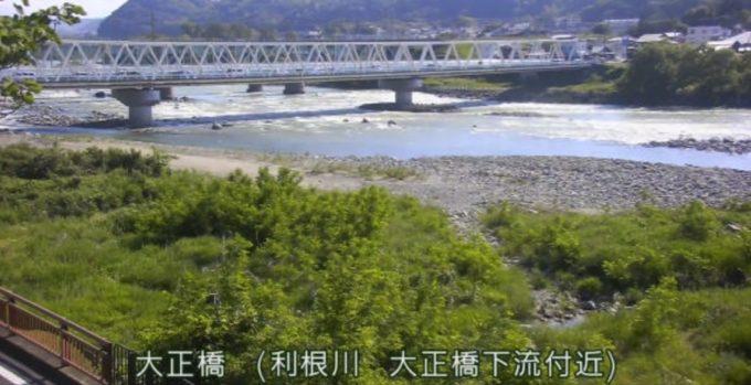 利根川大正橋ライブカメラ(群馬県渋川市渋川)