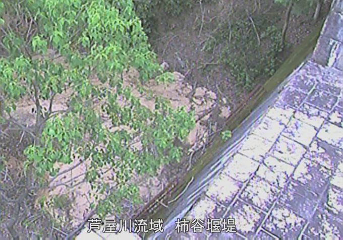 芦屋川流域柿谷堰堤ライブカメラ(兵庫県芦屋市奥山)
