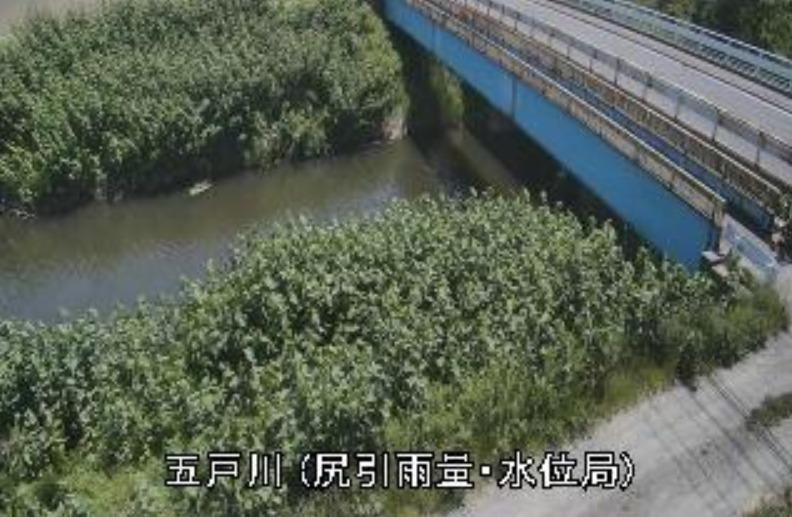 五戸川尻引ライブカメラ(青森県八戸市市川町)