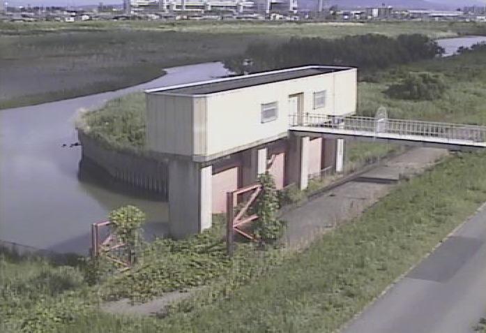 桂川西羽束師樋門ライブカメラ(京都府京都市伏見区)