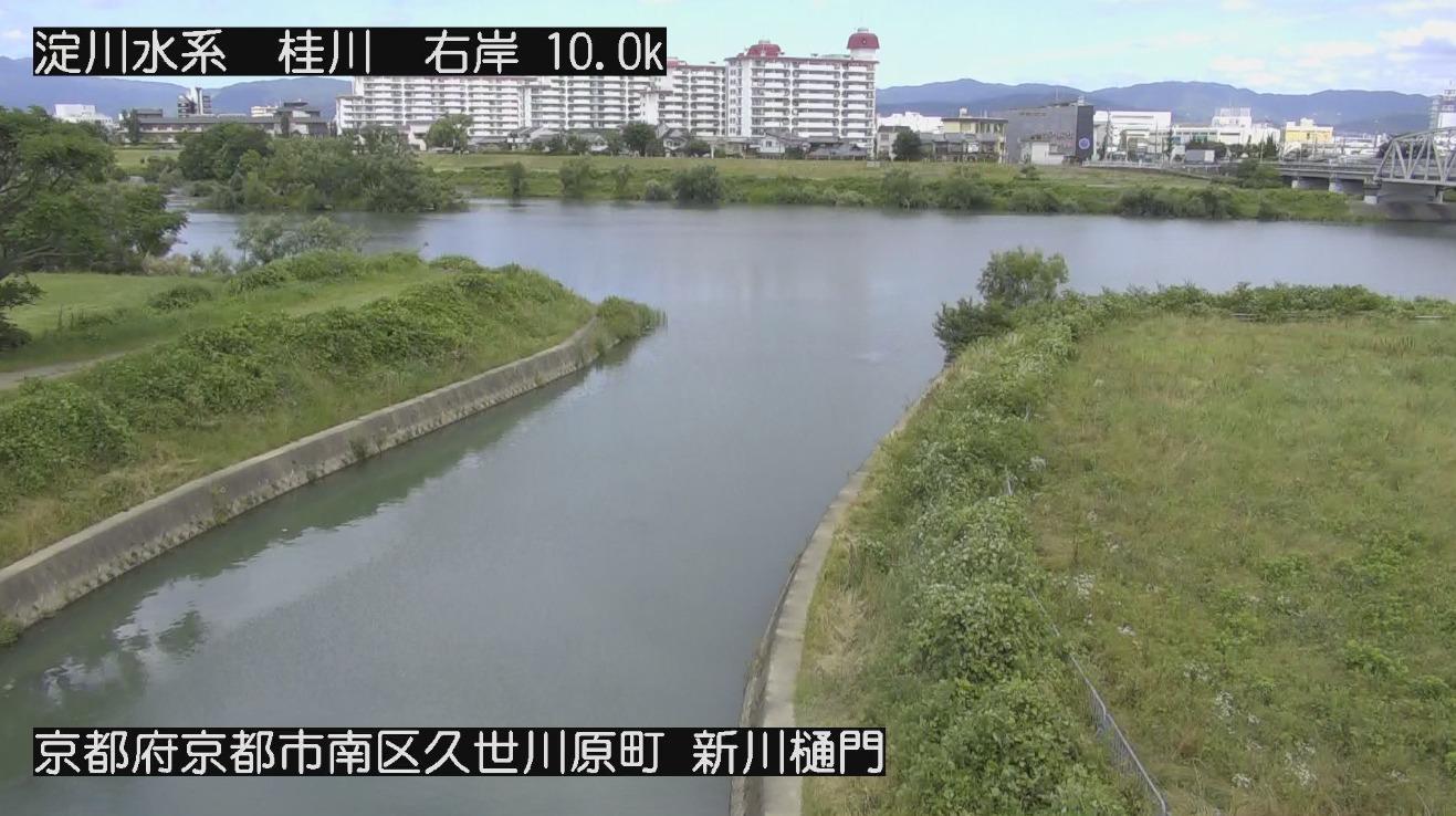 桂川新川樋門ライブカメラ(京都府京都市南区)