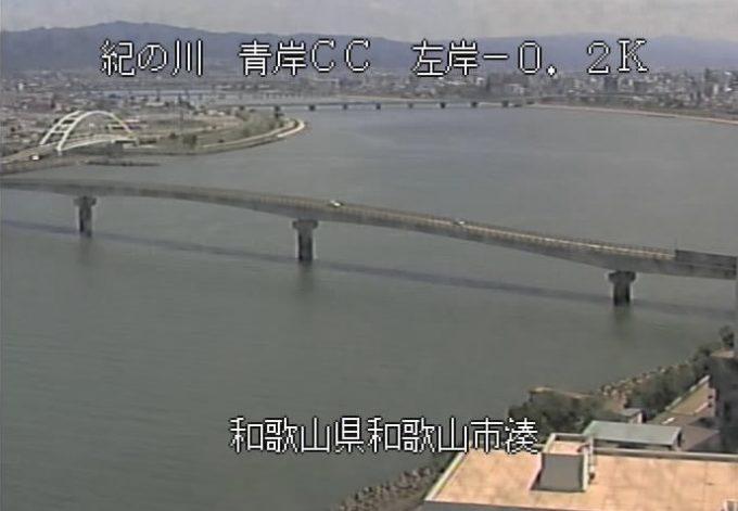 紀の川青岸クリーンセンターライブカメラ(和歌山県和歌山市湊)