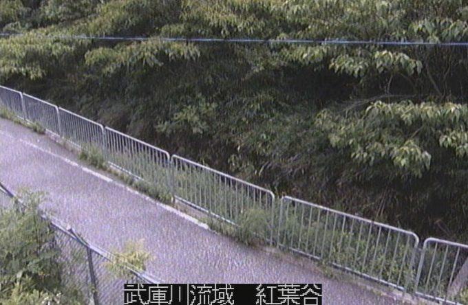 武庫川流域紅葉谷ライブカメラ(兵庫県宝塚市伊孑志)