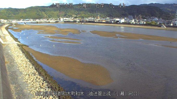 小瀬川油送管上流ライブカメラ(山口県和木町和木)