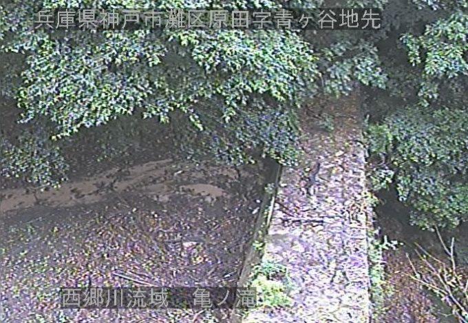 西郷川流域亀ノ滝堰堤ライブカメラ(兵庫県神戸市灘区)