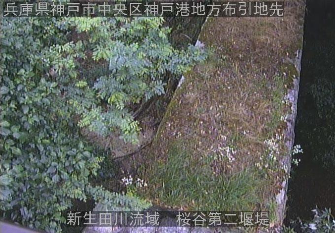 新生田川流域桜谷第二堰堤ライブカメラ(兵庫県神戸市中央区)