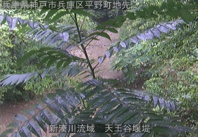 新湊川流域天王谷堰堤ライブカメラ(兵庫県神戸市兵庫区)
