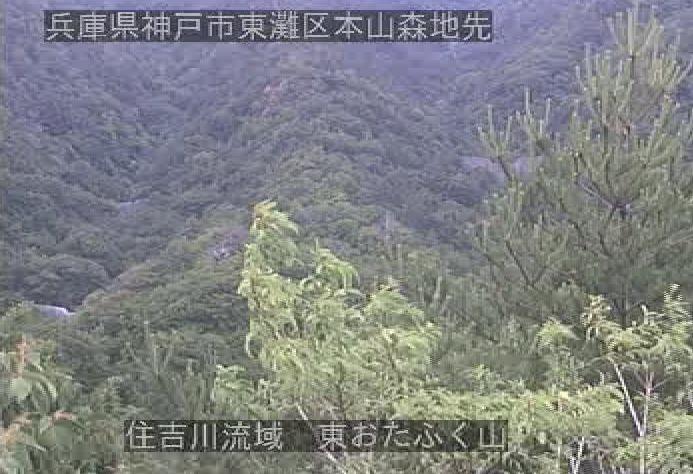 住吉川流域東お多福山ライブカメラ(兵庫県神戸市東灘区)