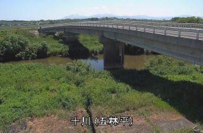 十川五林平ライブカメラ(青森県板柳町五林平)