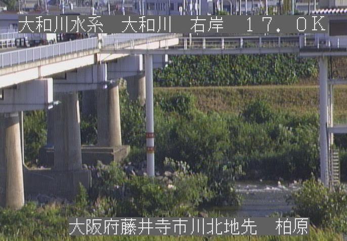 大和川柏原ライブカメラ(大阪府藤井寺市川北)