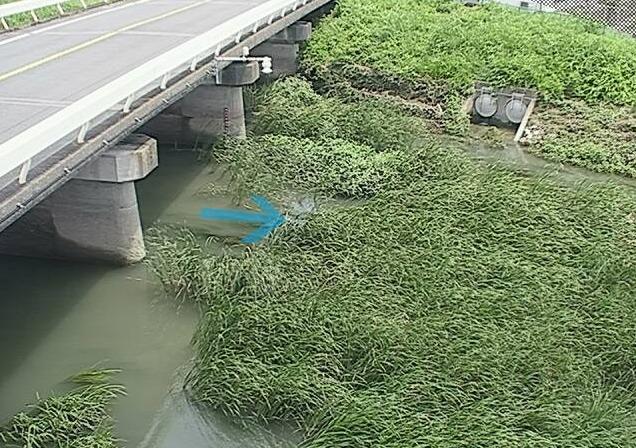 安間川市野橋ライブカメラ(静岡県浜松市東区)