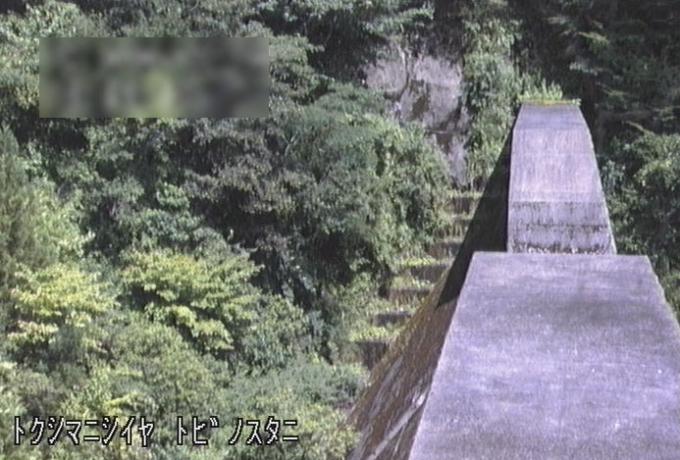 祖谷川とびのす谷ライブカメラ(徳島県三好市西祖谷山村善徳)