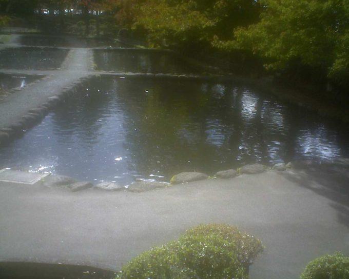 林養魚場ますつり公園ライブカメラ(福島県西郷村小田倉)