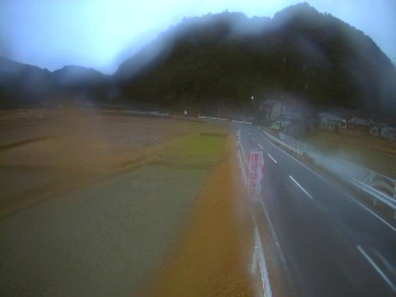 太田川中ノ川上流側ライブカメラ(和歌山県那智勝浦町中ノ川)