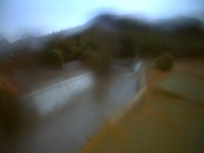 太田川中ノ川下流側ライブカメラ(和歌山県那智勝浦町中ノ川)