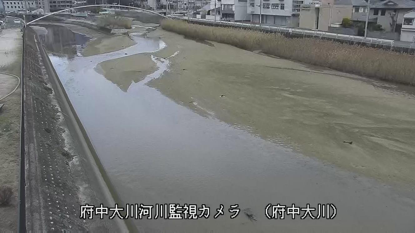 府中 広島 市 天気 県