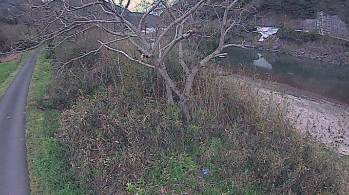 江の川7.4KP左岸ライブカメラ(島根県江津市川平町南川上)